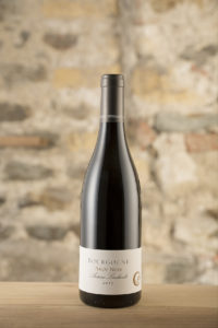 Vin Bio, Natural Wine