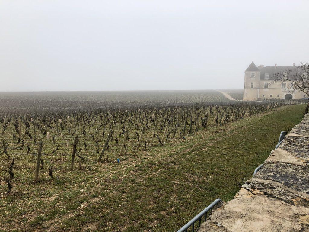 Burgund, Pinot Noir, Grand Cru